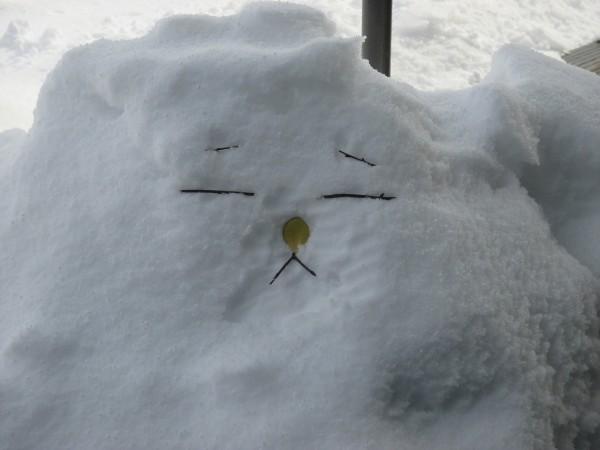 冬の不思議